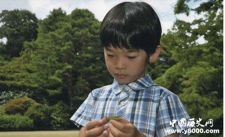 探秘:日本皇室生儿子为啥那么困难?